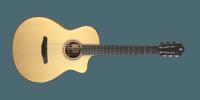 GN2 SW Furch Guitars