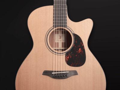 2019 Blue Gc CM SPE MC 9 Furch Guitars