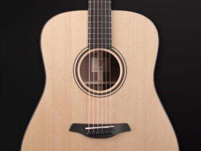 Blue Plus D SW 8 Furch Guitars