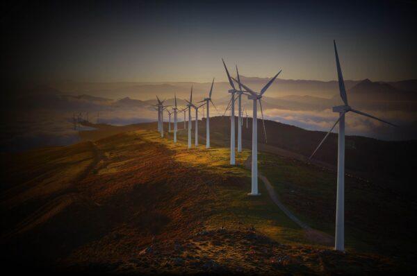 Furch Guitars Renewable Energy